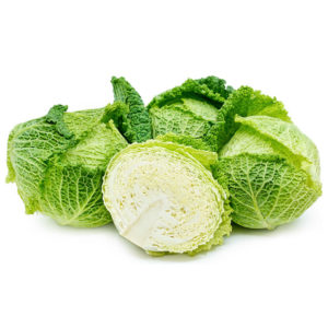 Cabbage Savoy