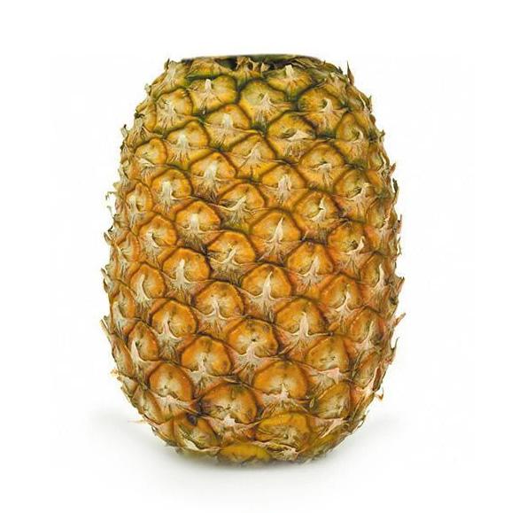 Pine Apple topless