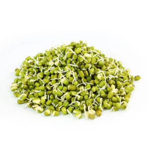 Sprout Moong bean