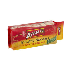 AYAN Instant Noodles 10 cakes  700g